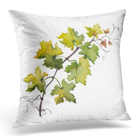 Punch Grape Leaf - CMFUN Green Watercolour Watercolor of Grape Leaf Raster Design on White Vine Pillow Case Pillow Cover 20x20 inch