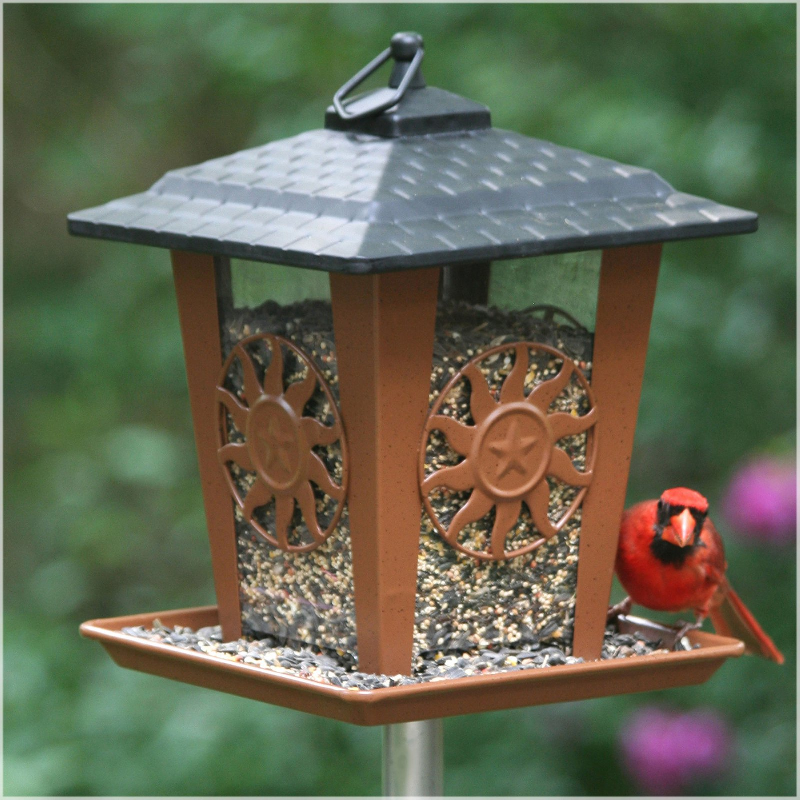 Perky-Pet Sun and Star Lantern Wild Birdfeeder by Perky-Pet