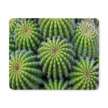 POP Cactus Plant Desktop Mousepad Laptop Mousepads Comfortable Computer Mouse Mat 9x10 inch - image 2 of 2