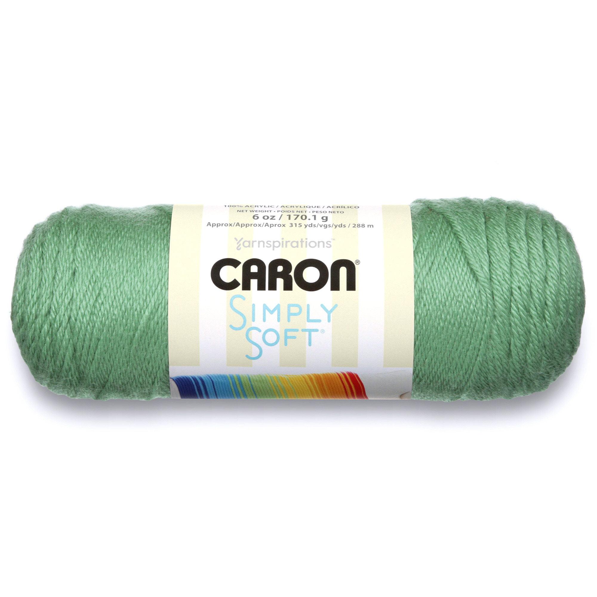 5daa135aa Caron Simply Soft Yarn