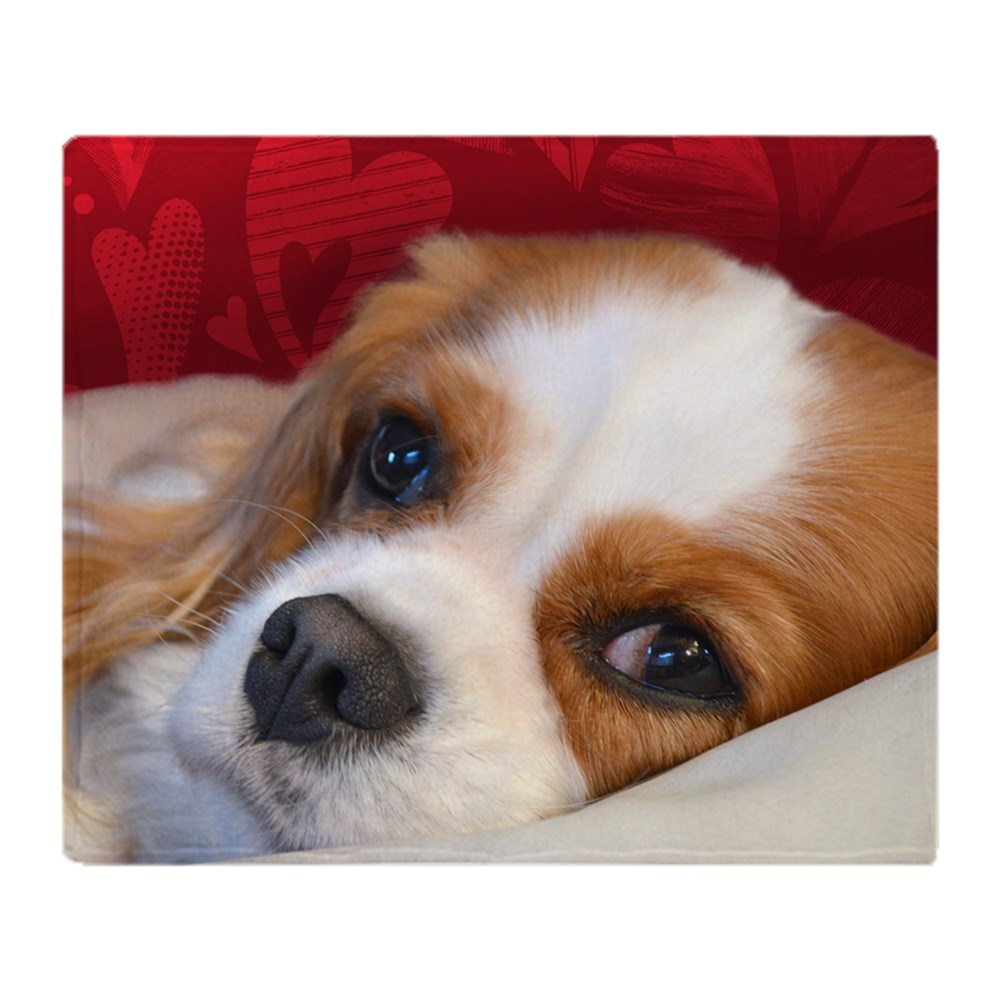 CafePress Blenheim Cavalier King Charles Spani Soft Fleece Throw Blanket,... by