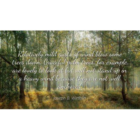 Joseph B. Wirthlin - Famous Quotes Laminated POSTER PRINT 24x20 - Relatively mild gusts of wind blow some trees down. Graceful palm trees, for example, are lovely to look at but will not stand up in (Blow Up Palm Tree)