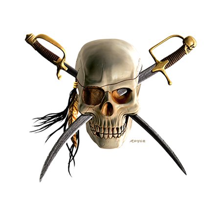 Pirate Skull Novelty Sign   Indoor/Outdoor   Funny Home Décor for Garages, Living Rooms, Bedroom, Offices   SignMission personalized gift Wall Plaque Decoration