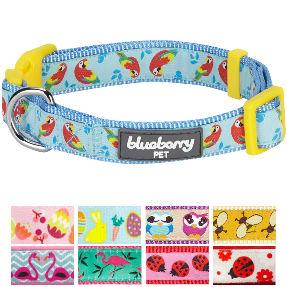 "Blueberry Pet Statement Funny Parrot Designer Adjustable Dog Collar, Small, Neck 12""-16"""