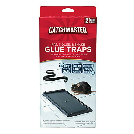 Catchmaster 402 Baited Rat Mouse and Snake Glue Traps Professional Strength (Snake And Mouse Best Friends)