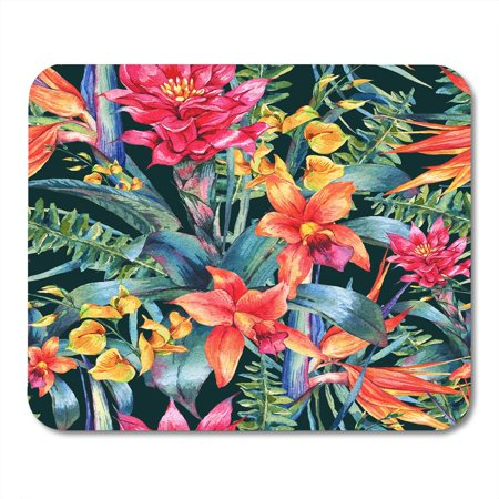 LADDKE Watercolor Vintage Floral Tropical Exotic Flowers Bird of Paradise Twigs and Leaves Botanical Bright Mousepad Mouse Pad Mouse Mat 9x10 inch