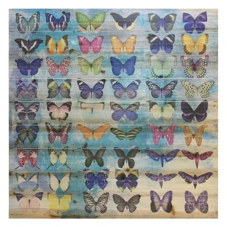 Empire Art Direct Butterflies Print on Solid Wood Wall Art, 36