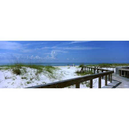 Usa Florida Gulf Of Mexico St George Island State Park Footbridge On A Beach Poster Print