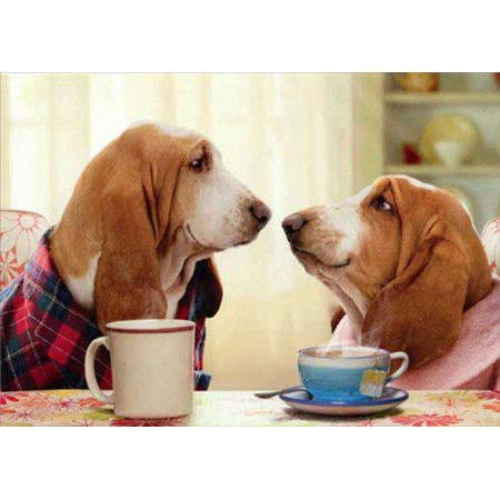 Funny Couple And Dog Halloween Costumes (Avanti Press Bassett Couple Nose To Nose Funny / Humorous Dog Valentine's Day)