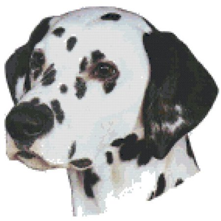 (Dalmatian Dog Portrait Counted Cross Stitch Pattern)