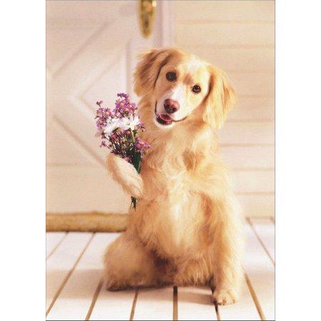 Avanti Press Dog Holding Bouquet of Flowers Golden Labrador Retriever Mother's Day Card ()
