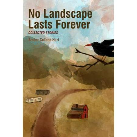 No Landscape Lasts Forever (Last Landscape)