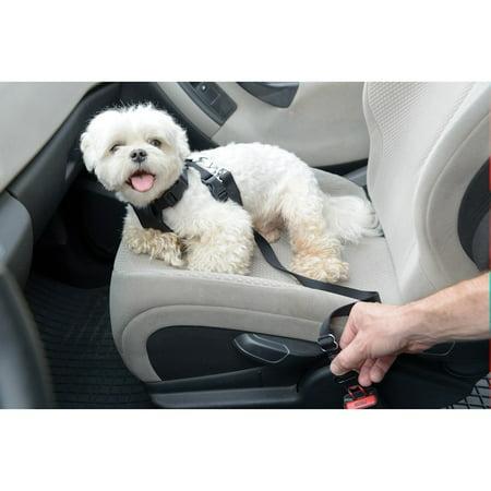 Dog Car Harness >> Dog Car Harness