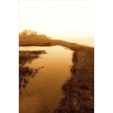 Harkers Island Marsh II Canvas Art - Alan Hausenflock (12 x 18)
