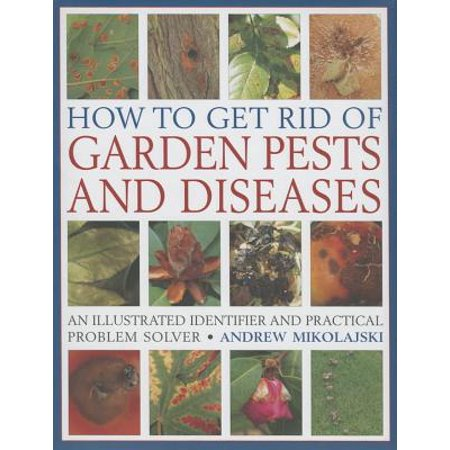 How to Get Rid of Garden Pests and Diseases : An Illustrated Identifier and Practical Problem (Best To Get Rid Of Stretch Marks)