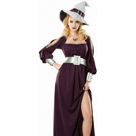 Cinema Halloween Prank (Cinema Secrets Womens Elegant Purple Wicked Witch Adult Halloween)