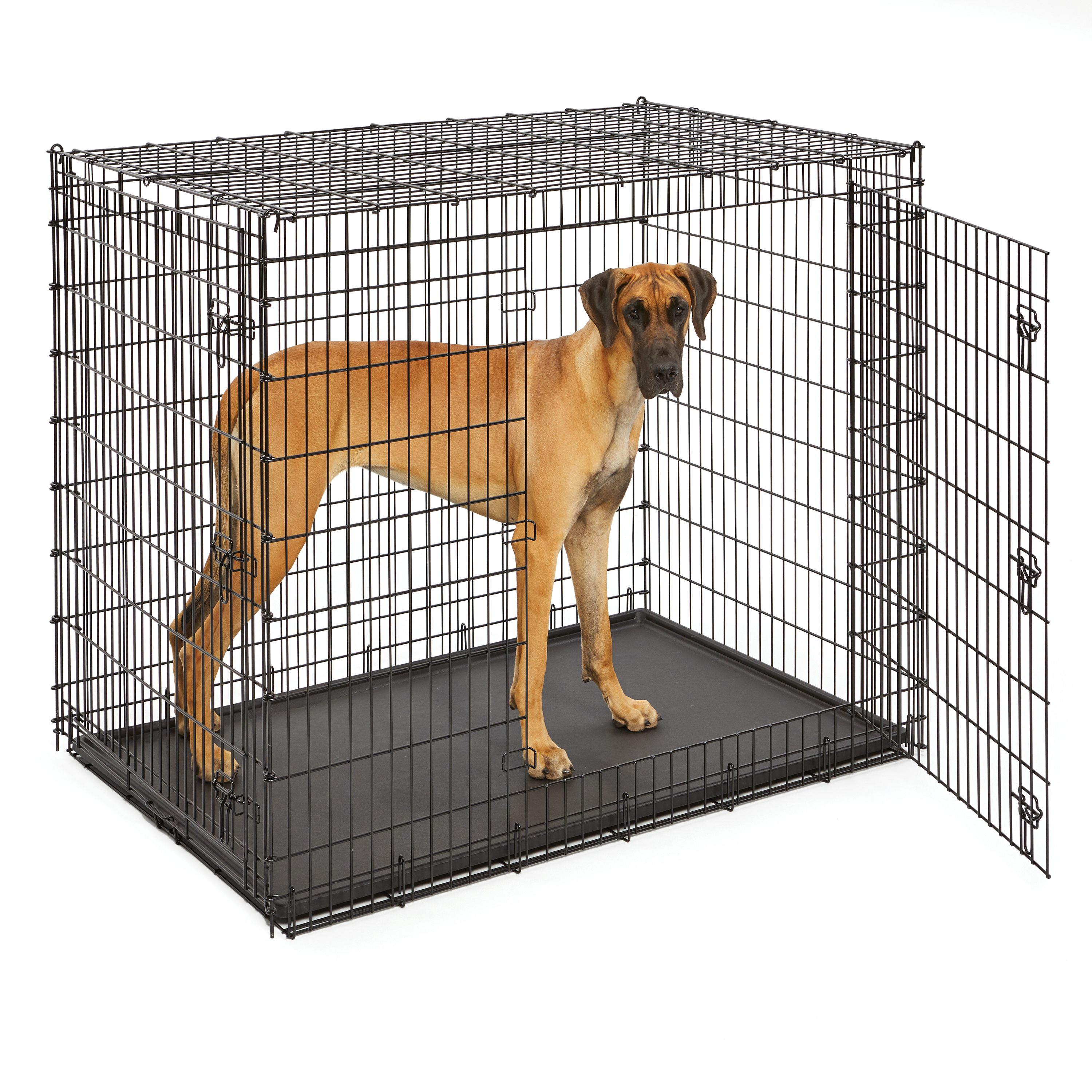 Giant Dog Crate 54-Inch for XXL Dog Breeds