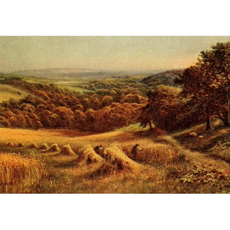 In Unfamiliar England 1910 Sussex Harvest Field Poster Print By  Daniel Sherrin