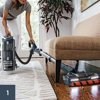 Shark® DuoClean® Powered Lift-Away® Upright Vacuum NV830