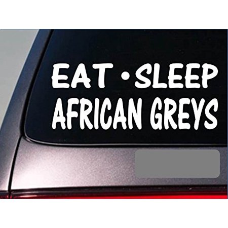 Eat Sleep African Grey Sticker *G769* Decal parrot bird cage treat food