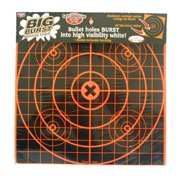 Birchwood Casey Big Burst Targets