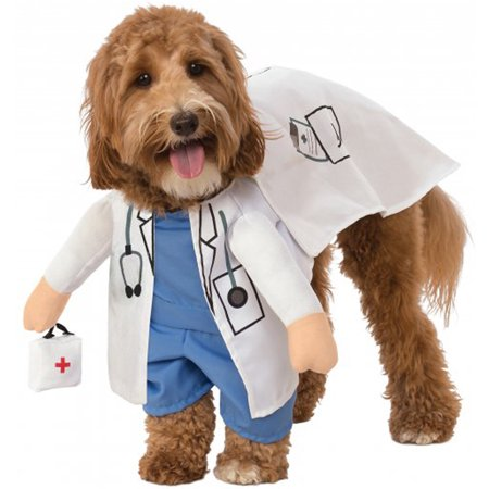 Walking Vet Animal Doctor Dr. Pet Dog Cat Halloween Costume (Dog Halloween Costumes Homemade)
