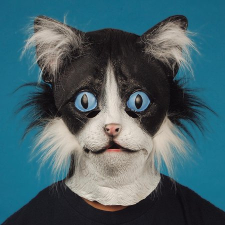 Star Power Furry Face Black Cat Animal Head Mask, Black White, One Size (Painting A Cat Face For Halloween)