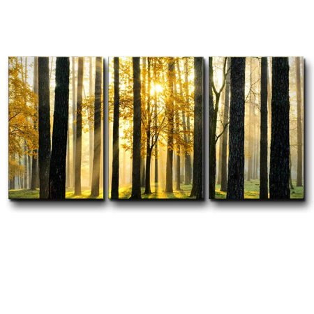 wall26 - Three Piece Canvas - Tree Forest During Fall Time with The Sun Peeking Through on 3 Panels - Canvas Art Home Decor - 16x24 inches](Fall Tree)