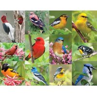 64654bdcbe14 Product Image Springbok Birds of a Feather 500-Piece Jigsaw Puzzle