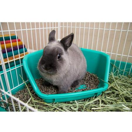 Tucker Murphy Pet Reynard Rabbit Litter Pan Walmart Com