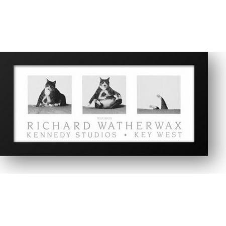 FrameToWall - Fat Cat Capsizing 29x15 Framed Art Print by Watherwax, Richard