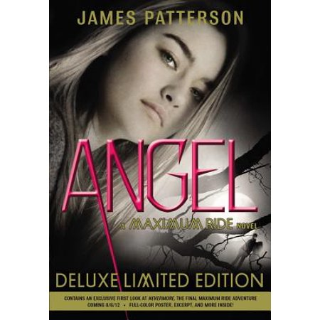 Angel : A Maximum Ride Novel (Maximum Ride The Angel Experiment Character Analysis)