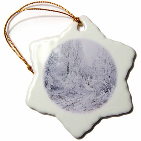 3dRose Snow Scene with Snow on Trees and Wilderness Road - Snowflake Ornament, 3-inch](Snowflake Scenes)