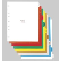 Omnimed  14 Tab Preprinted Poly Chart Dividers with Side Open