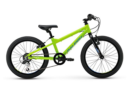Raleigh Bikes Kids Rowdy 20 Mountain Bike, One Size, Green by