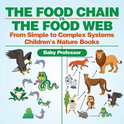 The Food Chain vs. the Food Web - From Simple to Complex Systems Children's Nature