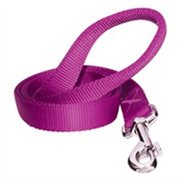 Dogit Training Leash .75inx6ft Purple