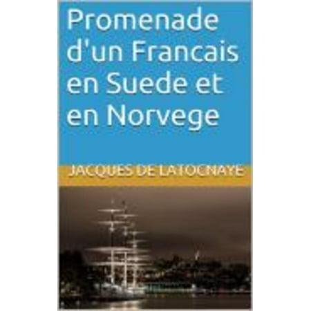 Promenade d'un Francais en Suede et en Norvege - eBook