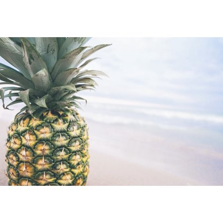 Fresh Pineapple - Laminated Poster Fruit Fresh Healthy Pineapple Food Organic Poster Print 11 x 17