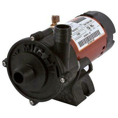 Waterway 3312610-19 Tiny Might 1/16HP Spa Pump, 1in. Barb x 1in. Barb, 115V