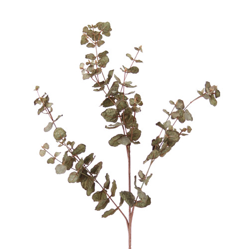 Distinctive Designs DIY Foliage Artificial Everlasting Eucalyptus (Set of 12)