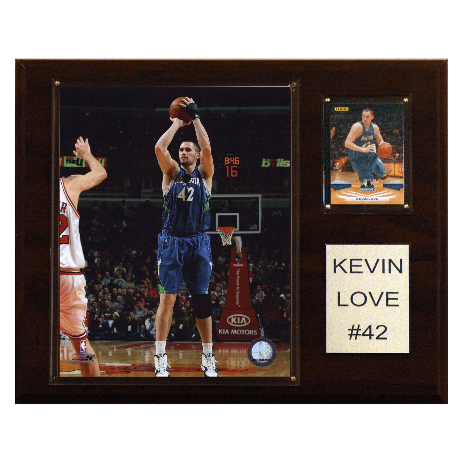 NBA 12 x 15 in. Kevin Love Minnesota Timberwolves Player Plaque