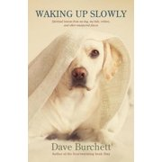 Waking Up Slowly - eBook