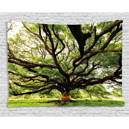 Nature Tapestry, The Largest Monkey Pod Tree in Thailand Eastern Green Big Branches Growth Eco Photo, Wall Hanging for Bedroom Living Room Dorm Decor, 60W X 40L Inches, Green Brown, by Ambesonne
