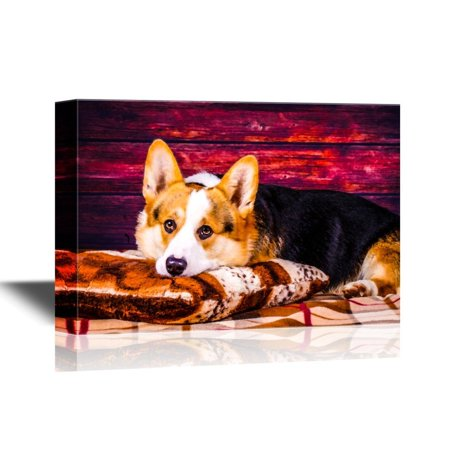 wall26 - Dogs Breeds Canvas Wall Art - Welsh Corgi Pembroke Dog - Gallery Wrap Pet Art for Modern Home Decor | Ready to Hang - 32x48 inches