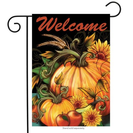 Autumn Harvest Welcome Garden Flag Fall Pumpkin 12.5  x 18  Briarwood Lane Autumn Harvest Welcome Garden Flag Fall Pumpkin 12.5  x 18  Briarwood Lane condition: New Brand: Briarwood LaneMPN: G00715Material: PolyesterSize: 12.5  x 18