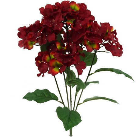 Burgundy Glitter Hydrangea Bush