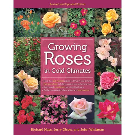 Growing Roses in Cold Climates : Revised and Updated