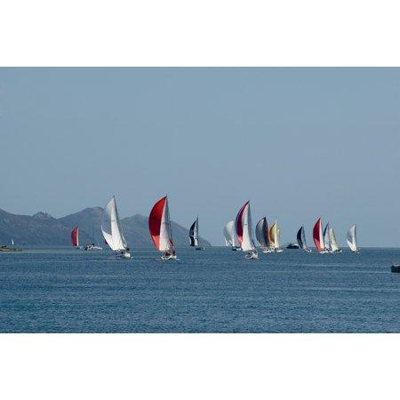 LAMINATED POSTER Sailing Boat Ocean Boat Race Sailing Regatta Sails Poster Print 24 x