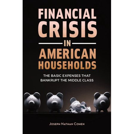 Financial Crisis In American Households
